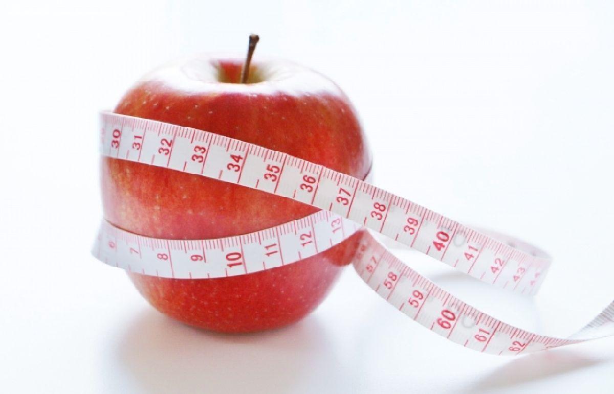 ダイエットの基本原理