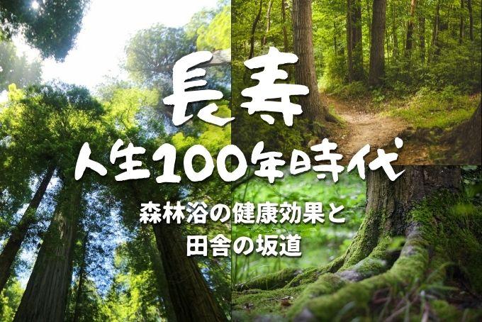 いろいろな森林の風景