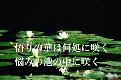 【ゴルフの悟りよ悩みの池に咲け】