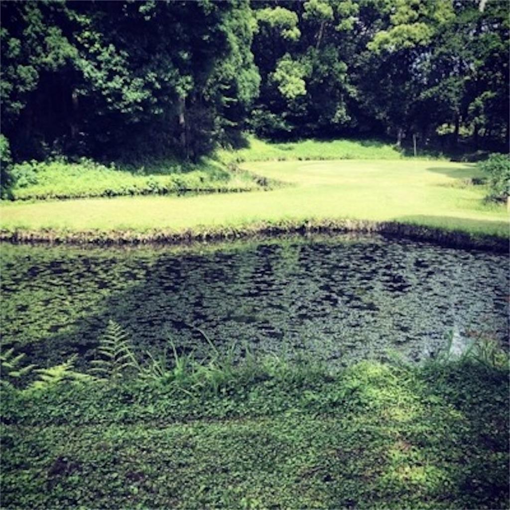 ゴルフ練習場は安息の地