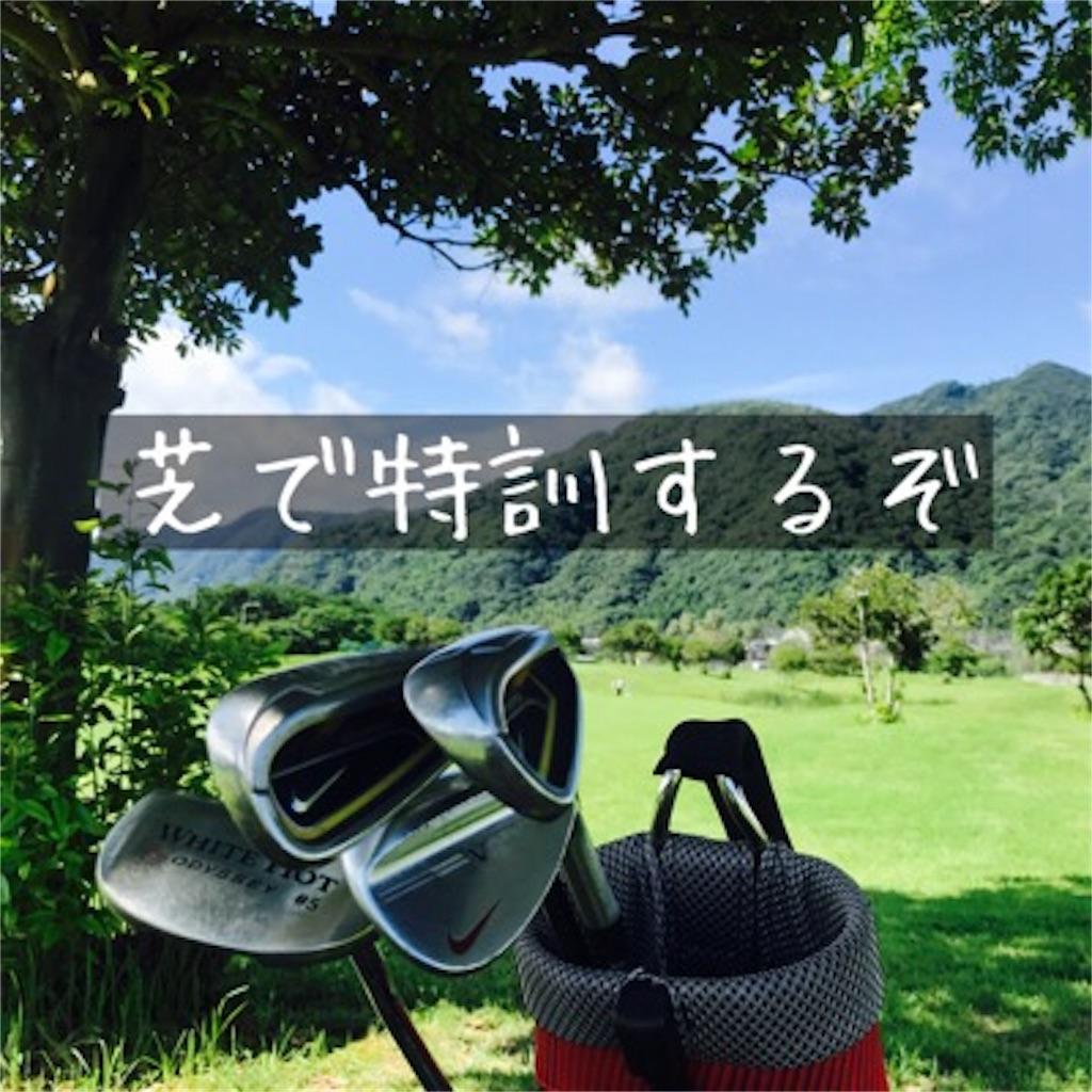 ゴルフはやっぱり芝から打たなくちゃね。