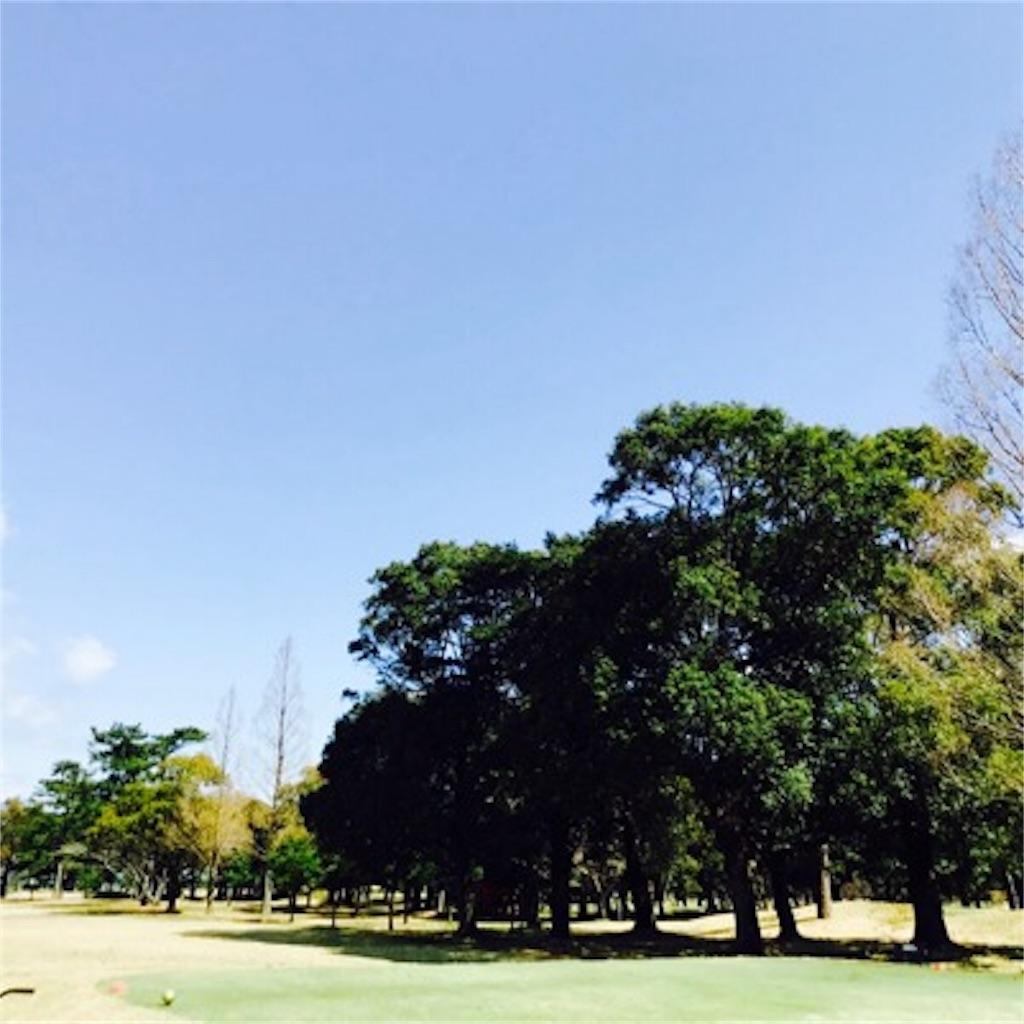 【木が多いゴルフ場】