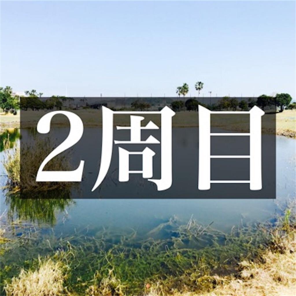【ショートコースをグルグル2周目】
