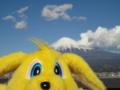 [富士山][パルちゃん通信]