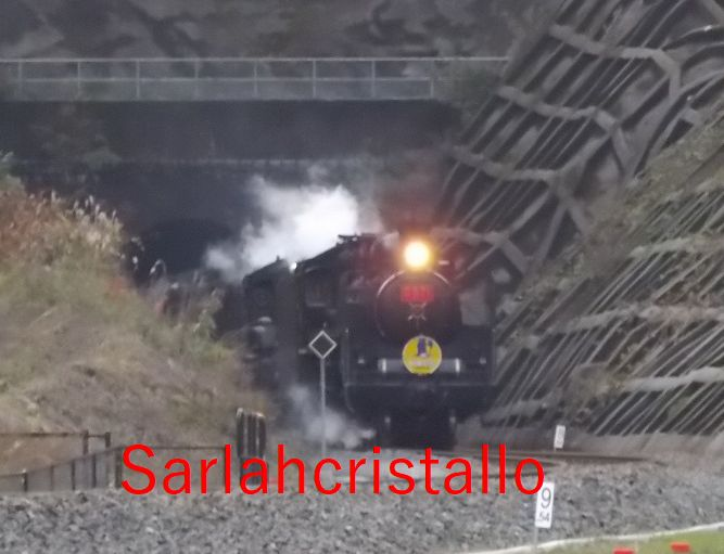 f:id:babupeikko:20171126203602j:plain