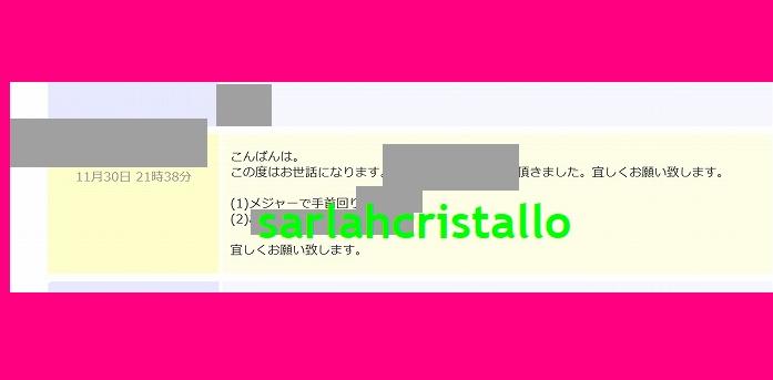 f:id:babupeikko:20181130220138j:plain