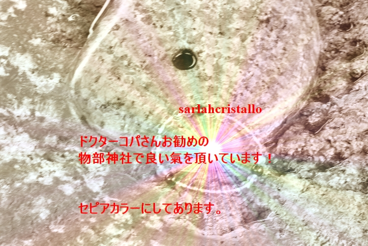 f:id:babupeikko:20200125221533j:plain