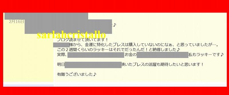 f:id:babupeikko:20200216230616j:plain