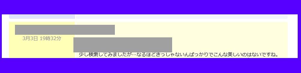 f:id:babupeikko:20200308221138j:plain