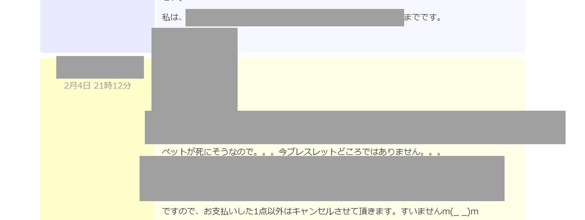 f:id:babupeikko:20210205021912j:plain