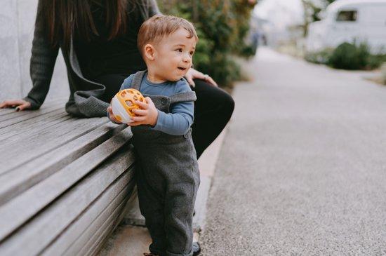f:id:baby-alice:20201117164705j:plain