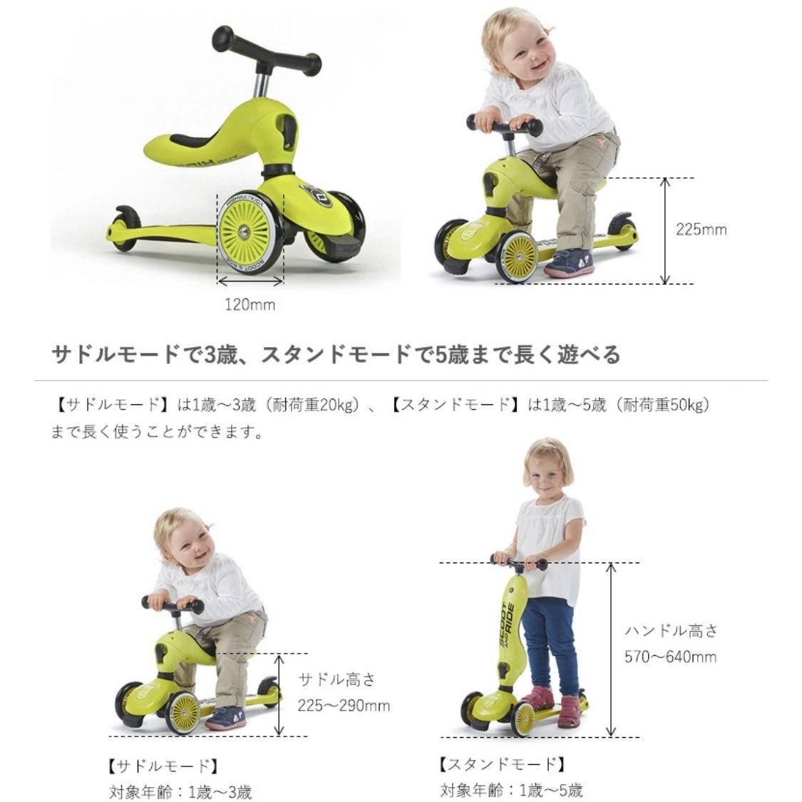 f:id:baby-alice:20210301120543j:plain