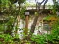 京大吉田キャンパス
