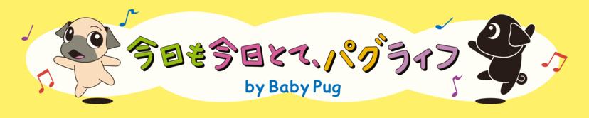 今日も今日とて、パグライフ By Baby Pug