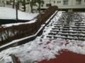 [twitter] 雪