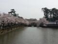 [twitter] 桜