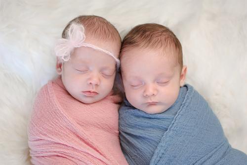 一卵性双生児と二卵性双生児