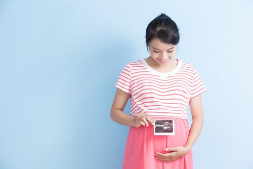 妊娠10週目の胎児の成長の様子