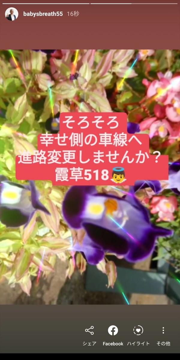 f:id:babysbreath55:20201019091938j:plain