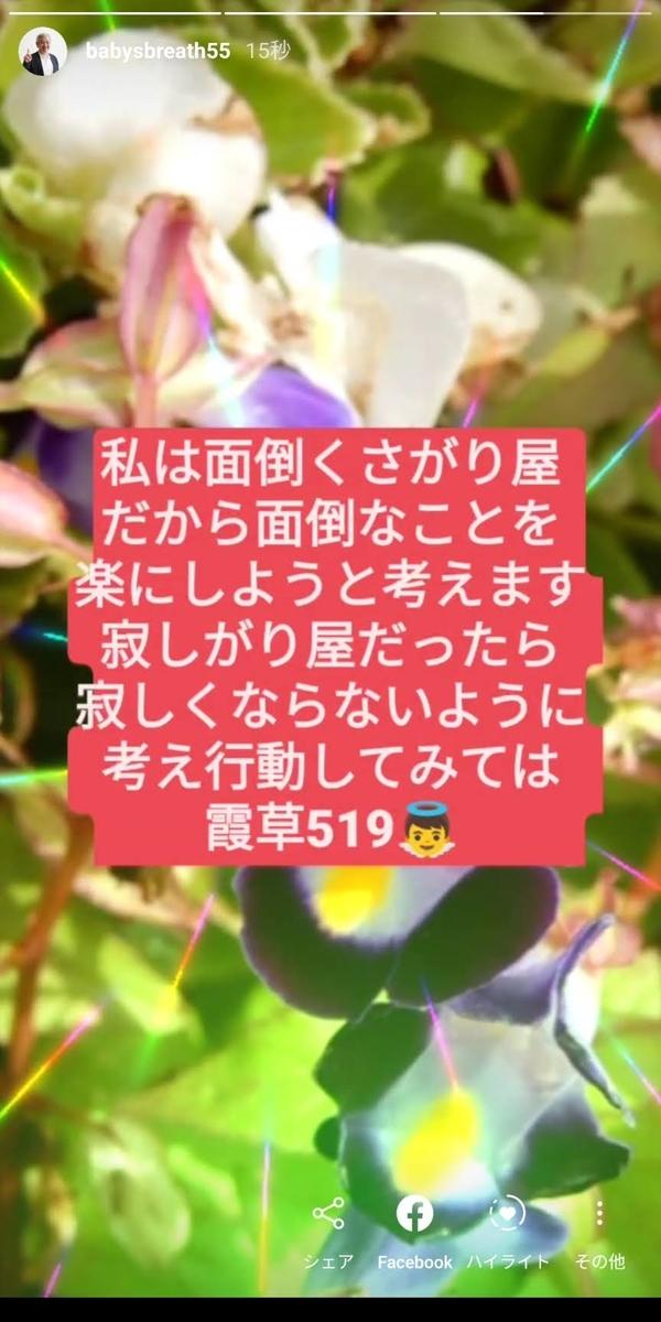 f:id:babysbreath55:20201019091952j:plain