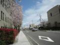 JR大津駅からびわ湖ホールに向かう途中(県庁付近)