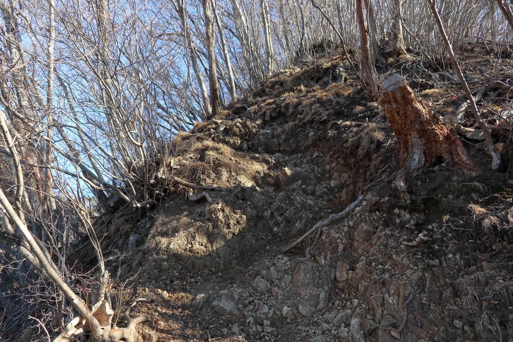 ゴツゴツしてますが歩きやすい岩場です