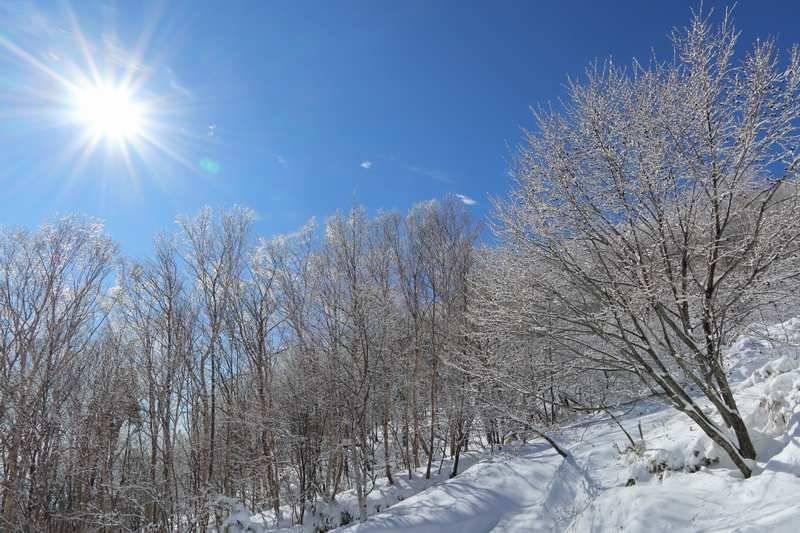 晴天に恵まれた中、雪道を歩く。