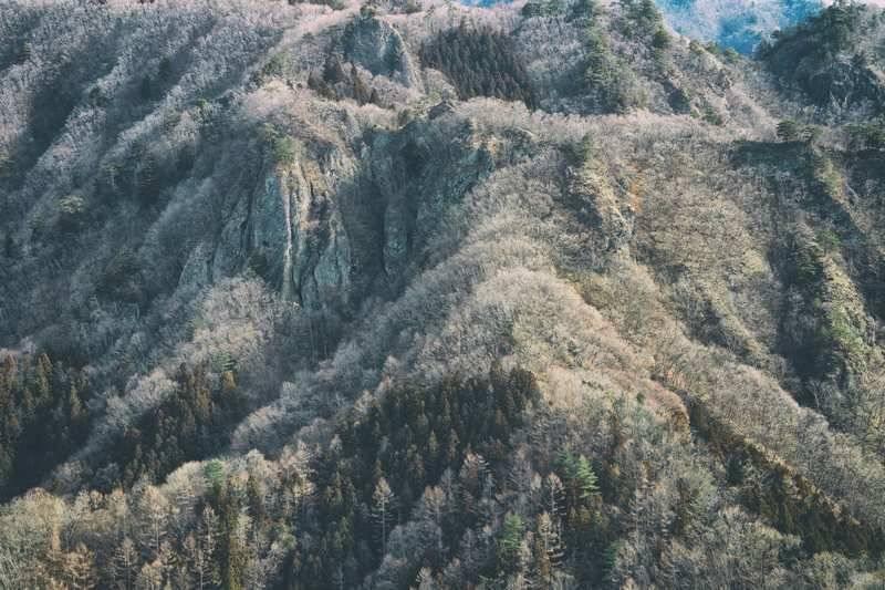 山々を眺めます。冬枯れの季節、絵ヅラが地味です(笑)。