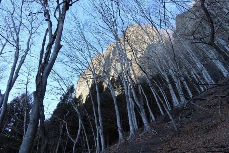 西上州の岩々を眺めながら急登を進みます。