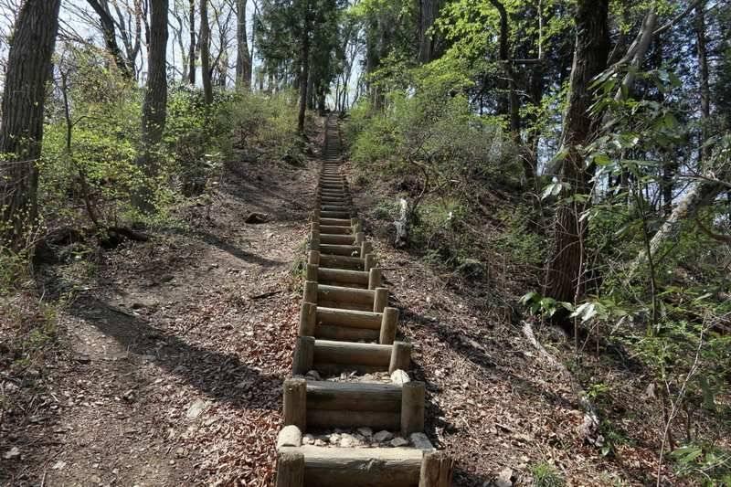 急登や階段には巻き道もあり、自分に合わせたコースで歩けます。