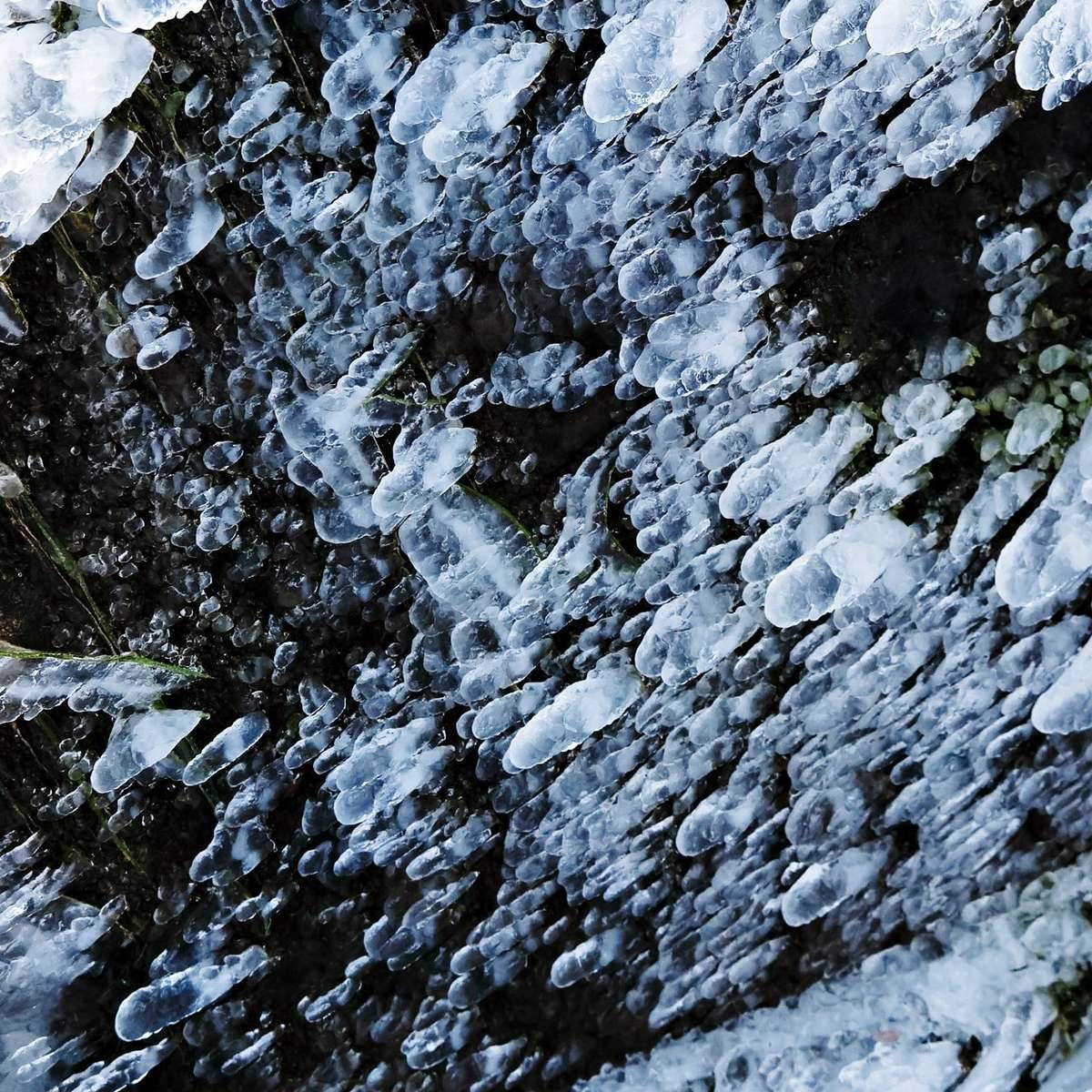 Canon PowerShot G1 X Mark II [ISO125, F5.6, 1/1000s]