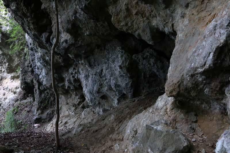岩が目立ち始めます。
