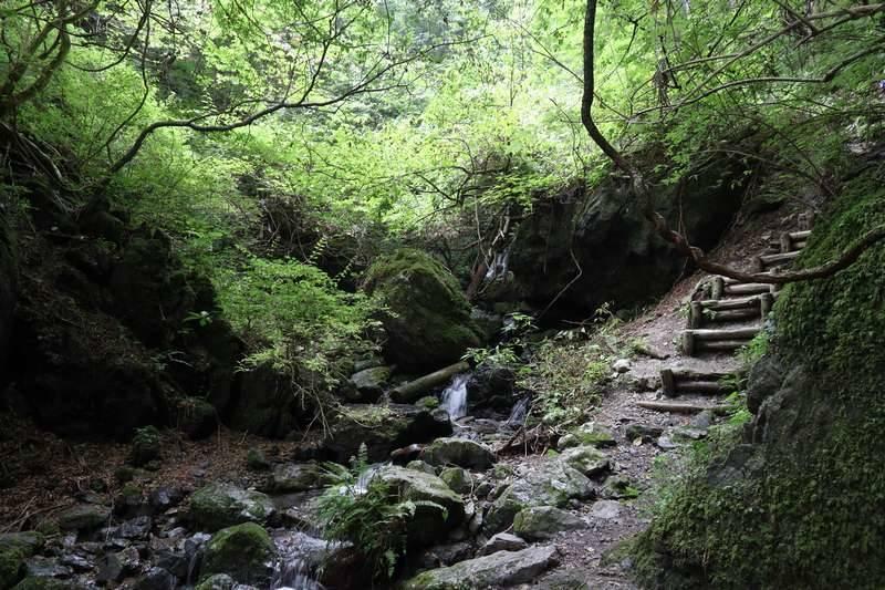 渓谷を抜け林道に出るので軽く休憩を。