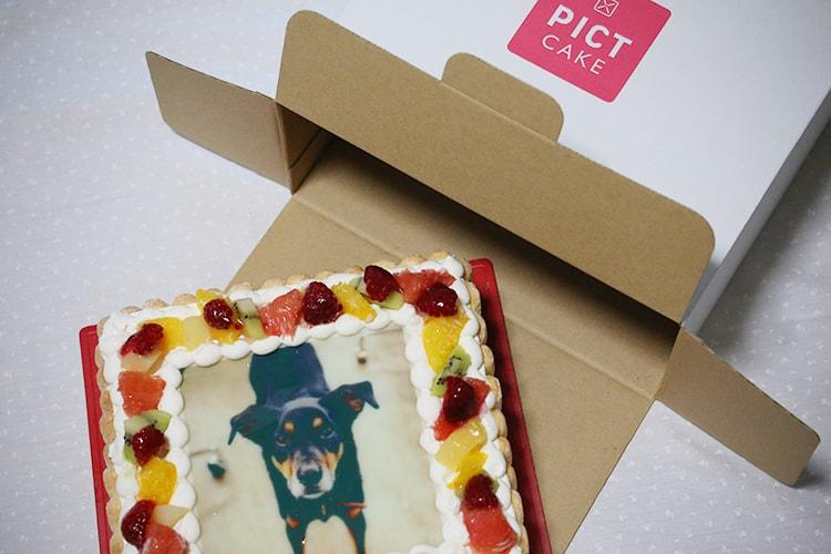 f:id:bake-pictcake:20170224163929j:plain