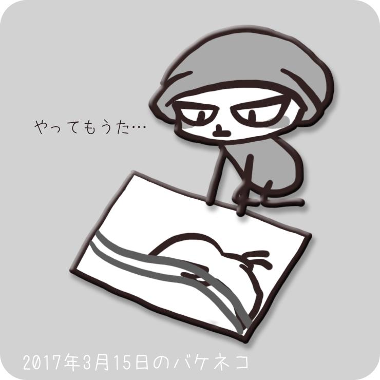 f:id:bakeneko18:20170315212436j:plain
