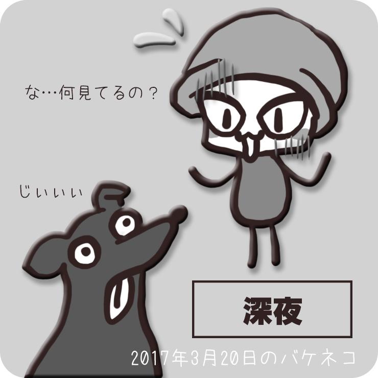 f:id:bakeneko18:20170320210920j:plain