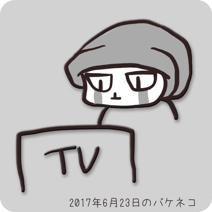 f:id:bakeneko18:20170623234028j:plain