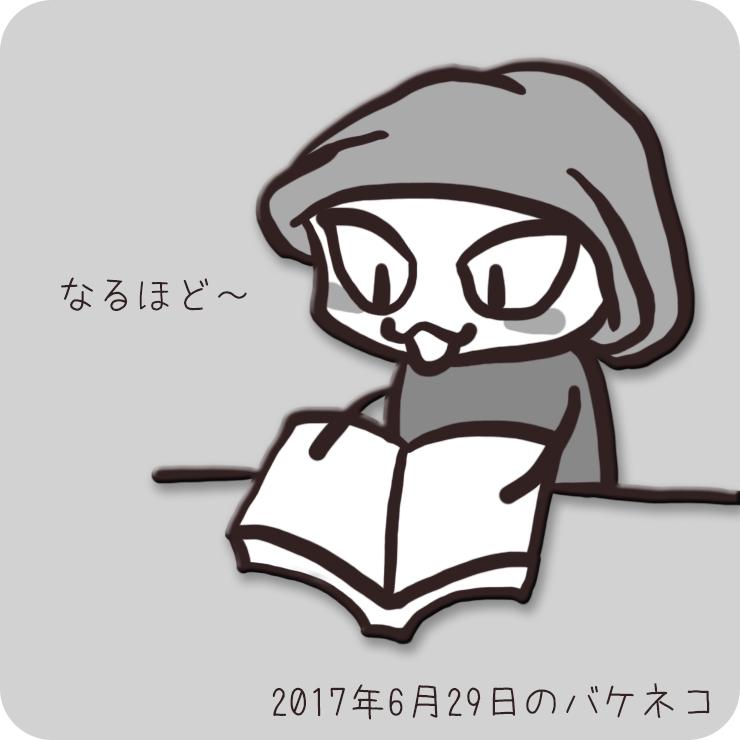 f:id:bakeneko18:20170630130142j:plain