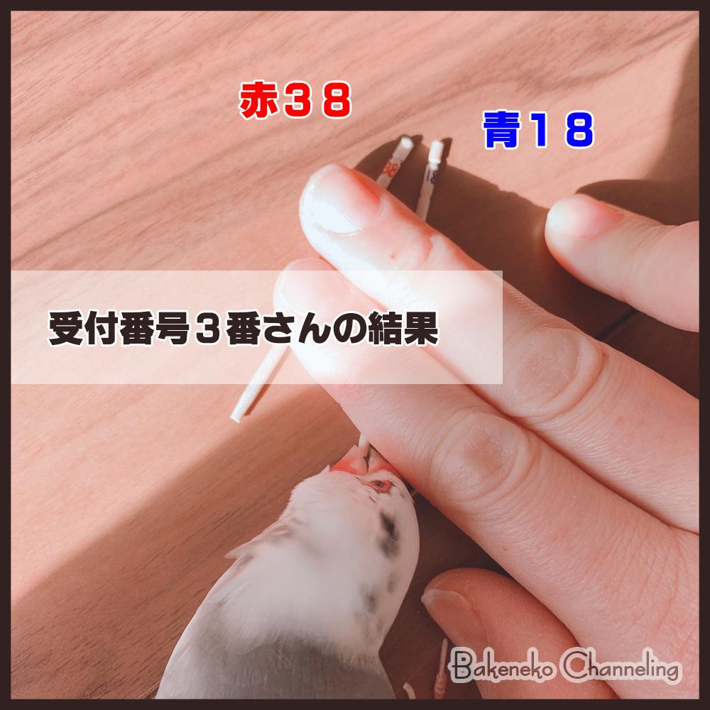 f:id:bakenekolabo:20210102153502j:plain