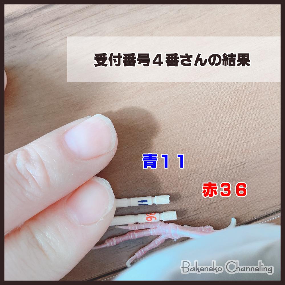 f:id:bakenekolabo:20210102153719j:plain