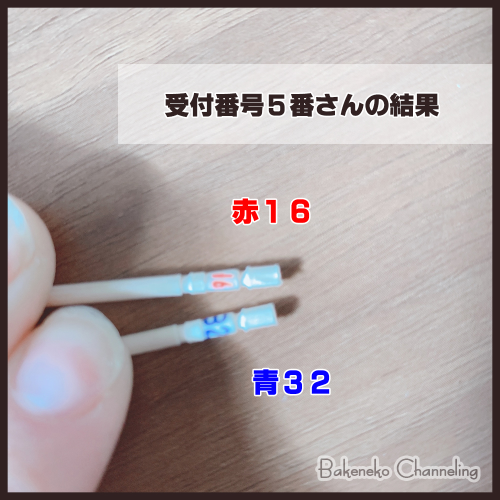 f:id:bakenekolabo:20210102153817j:plain