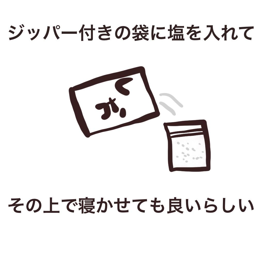 f:id:bakenekolabo:20210410200234j:plain