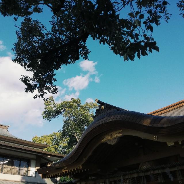 f:id:baku305:20180102104233j:image