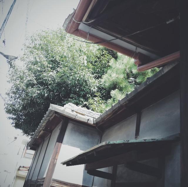 f:id:baku305:20180726121544j:image