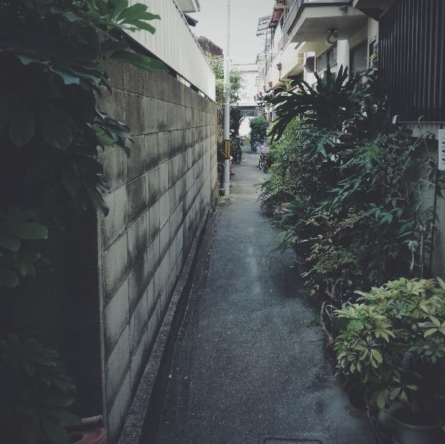 f:id:baku305:20180726121608j:image