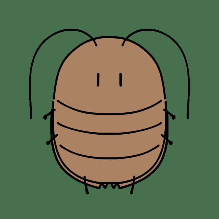 ゴキブリイメージ
