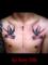 タトゥーデザイン アメリカントラディショナル トラッド ツバメ