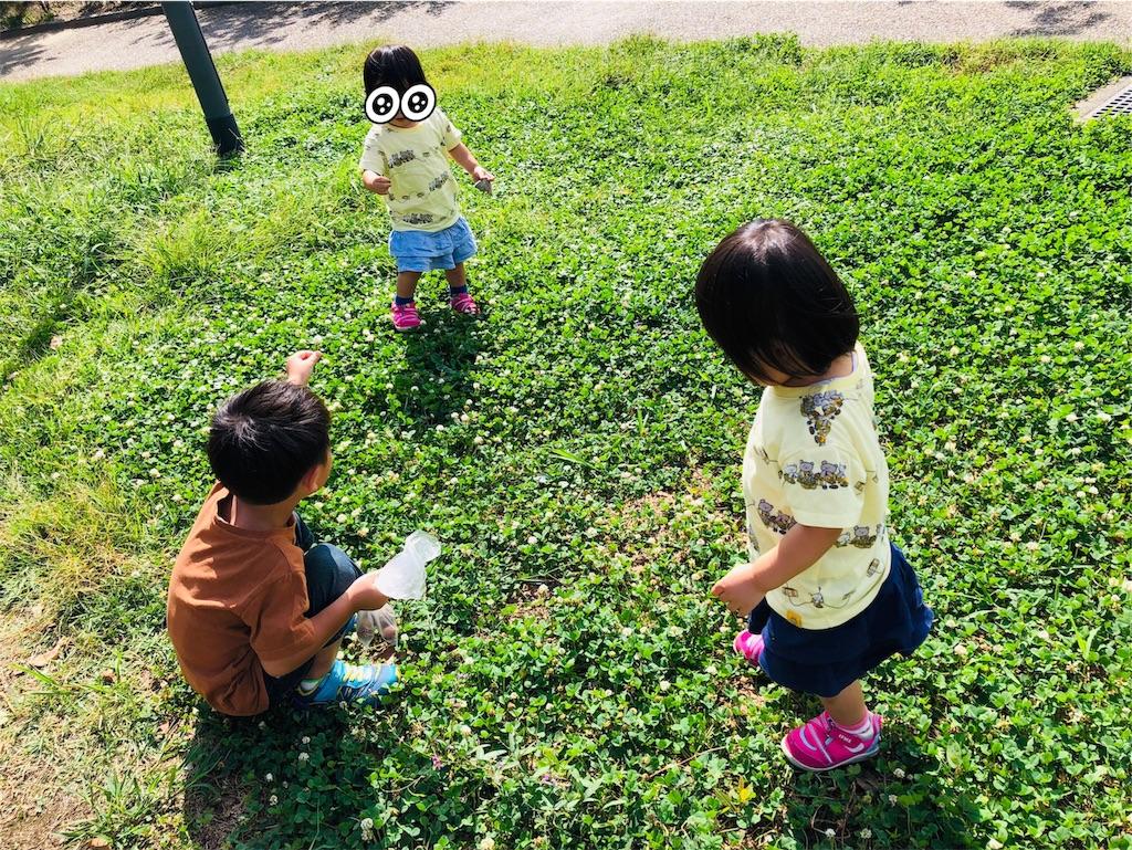f:id:banana-daisuki:20191128120048j:image