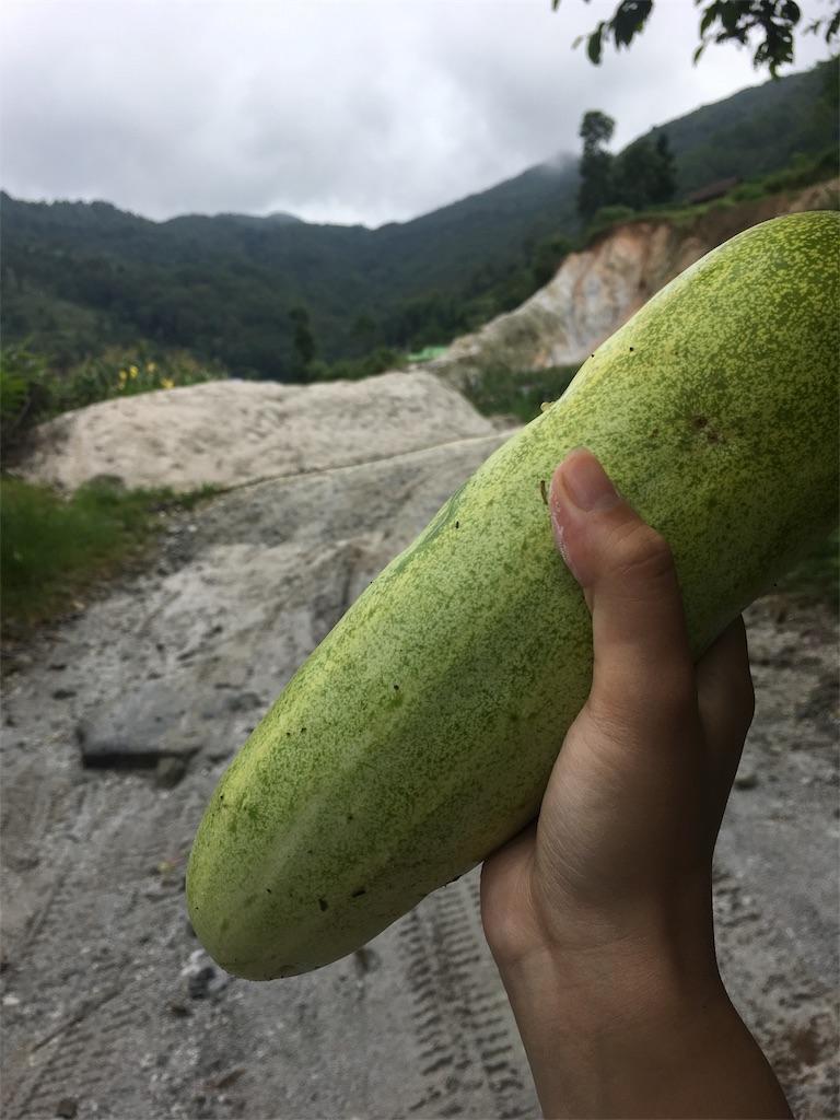 f:id:banana-kagehira:20180814214713j:image