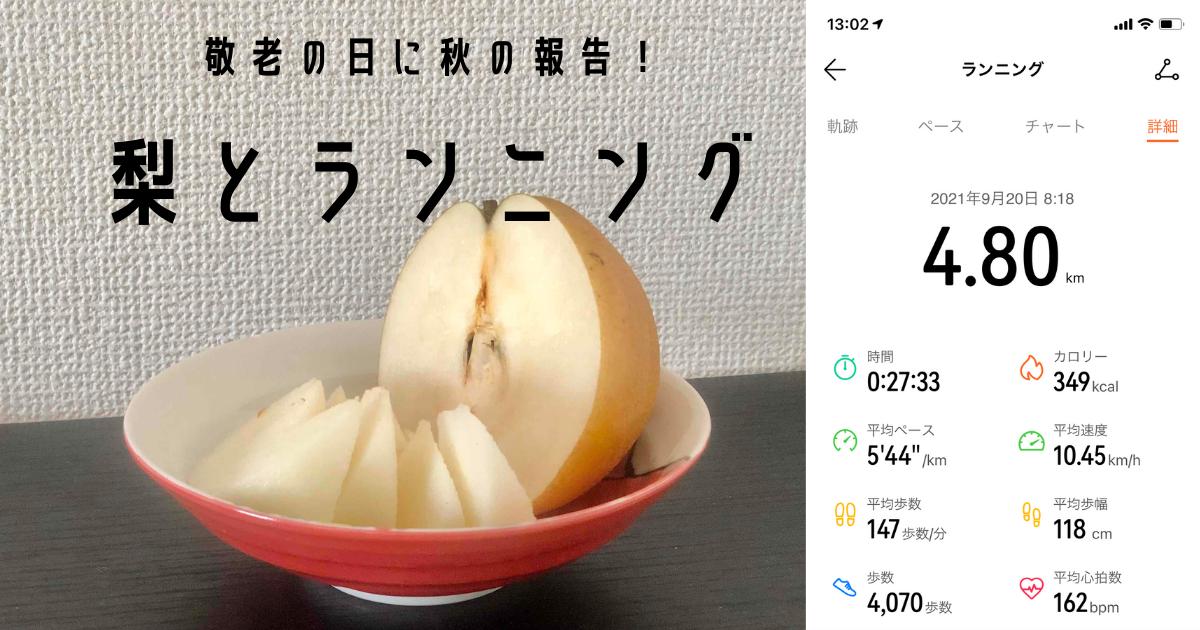 f:id:banana-t:20210920133041p:plain